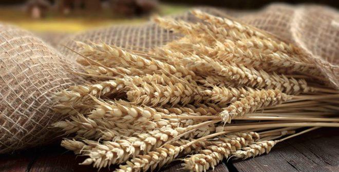 Festa del Mangiar Sano…alla scoperta dei sapori della Tradizione
