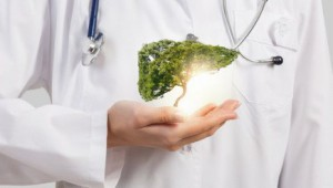 fegato-depurazione