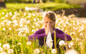 Allergie: colpa del polline, del clima o del nostro sistema immunitario indebolito?