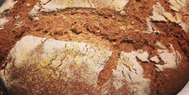 Profumo di pane con grani antichi