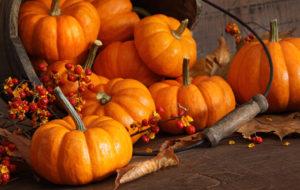 Il cibo dell'autunno. Come cambiare alimentazione per non incorrere nei malanni di stagione?