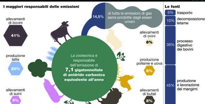 Quale la principale causa di inquinamento?