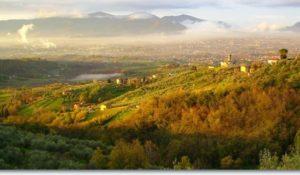 Week End Detox in Toscana. Grazie! Mi Amo!!! @ Fattoria di Petrognano. Villa Fattoria Gambaro  | Petrognano | Toscana | Italia