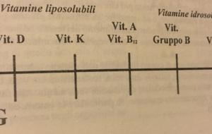 Vitamine? Amine di Vita. Vediamole in termini Yin e Yang