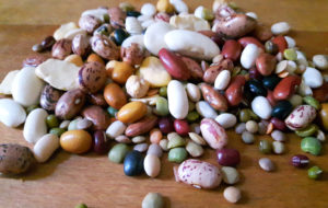 Legumi: fonte preferenziale di proteine