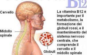Vitamina B12 e rischi da carenza