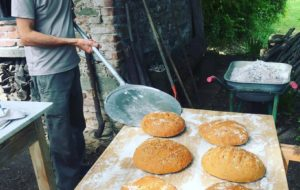 Buono come il pane… purché sia pane buono
