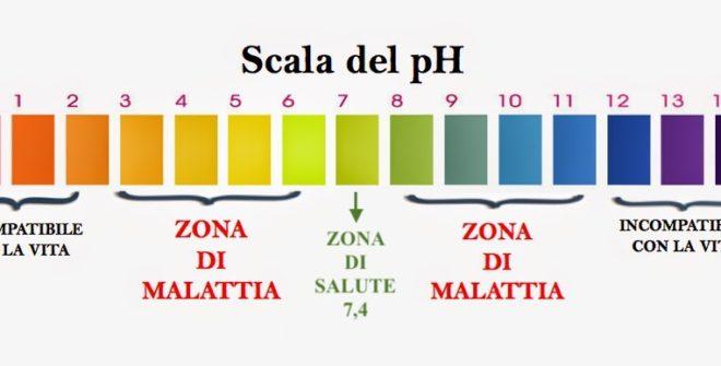 Quali sono i cibi alcalinizzanti? Come funziona il pH?