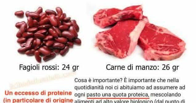 Se c'è una cosa che ci rovina è l'ossessione per le proteine…