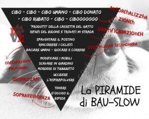Piramide di bau-slow vista dai cani