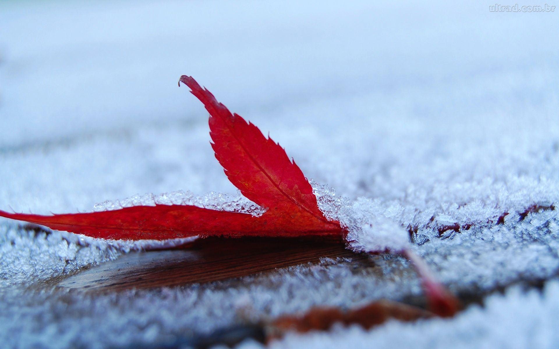 inverno_1920x1200