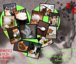 Burro di cocco sano per gatti e cani